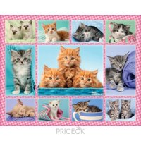 Фото Ravensburger Забавные котята (10530)